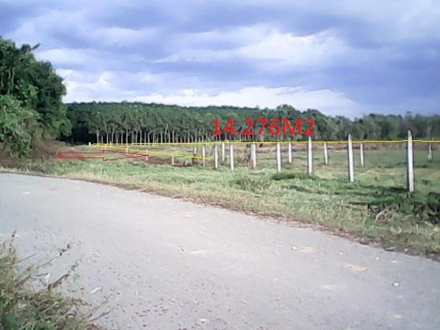 Bán 14.400m2đất vườn trang trại xã Thái Mỹ Củ Chi giá 120 ngàn/1m2