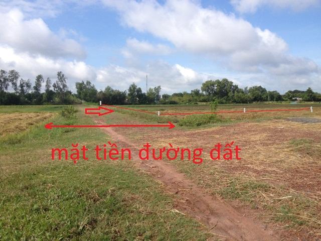 Bán đất trang trại xã Thái Mỹ Củ Chi 2.900m2 giá 350 triệu