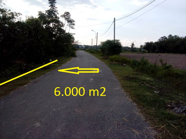 Bán 6.000m2 đất mặt tiền đường nhựa khu dân cư xã Thái Mỹ,Củ Chi  giá 200 ngàn/1m2