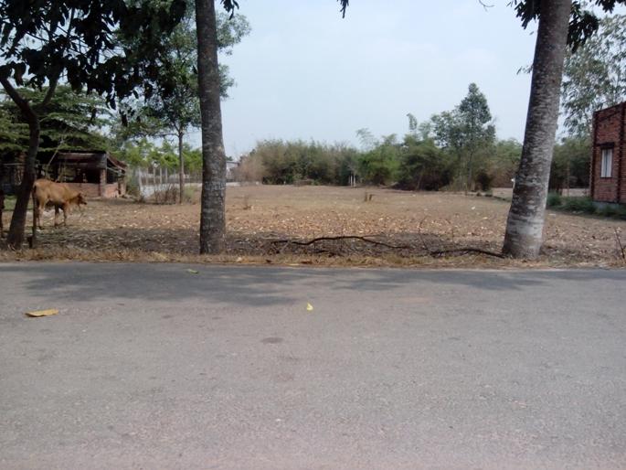 Đất rẻ mặt tiền đường nhựa 6m Củ Chi-TP.Hồ Chí Minh (20m x 100m), {2000m2}, giá 750tr.