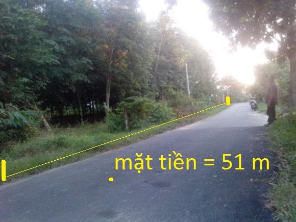 Bán 3.503 m2 đất mặt tiền đường nhựa( Trương Thị Kiện) Thái Mỹ Củ Chi giá 350 ngàn/1m2