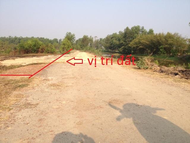 11.920m2 đất trang trại(cây lâu năm)mặt tiền đường đất đỏ xã thái mỹ củ chi giá 700 ngàn/1m2