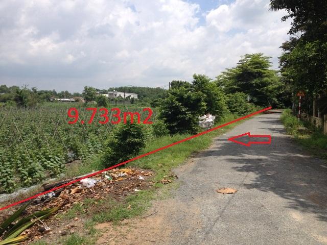 Đất nhà vườn trang trại 9.733m2 mặt tiền đường nhựa củ chi giá 320 ngàn/m2