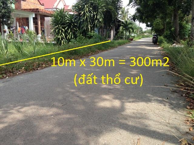 Đất nền thổ cư ngang 10x30=300m2 đường nhựa xã Thái Mỹ,Củ Chi giá 320 triệu
