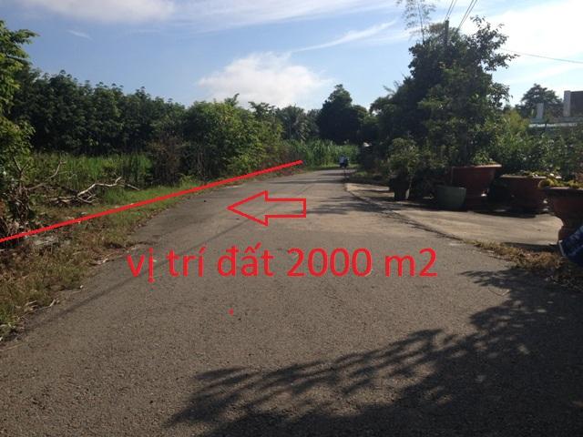 2.000m2 Đất xây nhà vườn biệt thự mặt tiền đường nhựa xã Thái Mỹ,Củ Chi giá 780 triệu