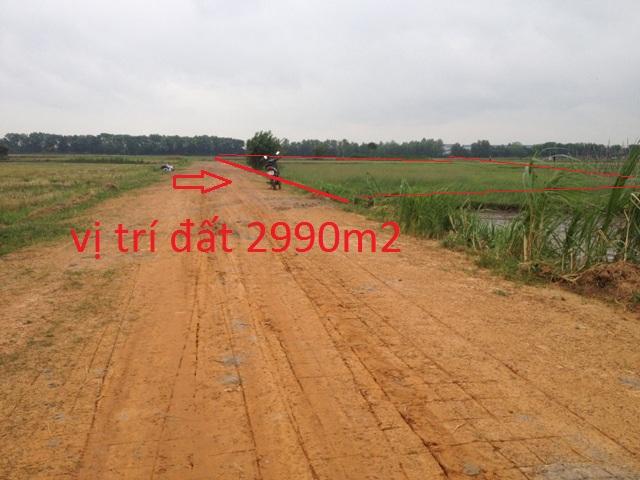 Bán đất vườn 2990m2 xã Thái Mỹ Củ Chi giá 600 triệu