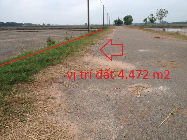 Bán 4.472m2 đất mặt tiền đường nhựa xã Thái Mỹ Củ Chi giá 750 triệu