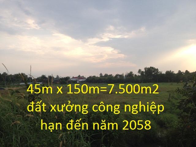 Bán đất xưởng mặt tiền hương lộ 2 Củ Chi diện tích  45m x 150m = 7.500m2 giá 1 triệu 3/1m2